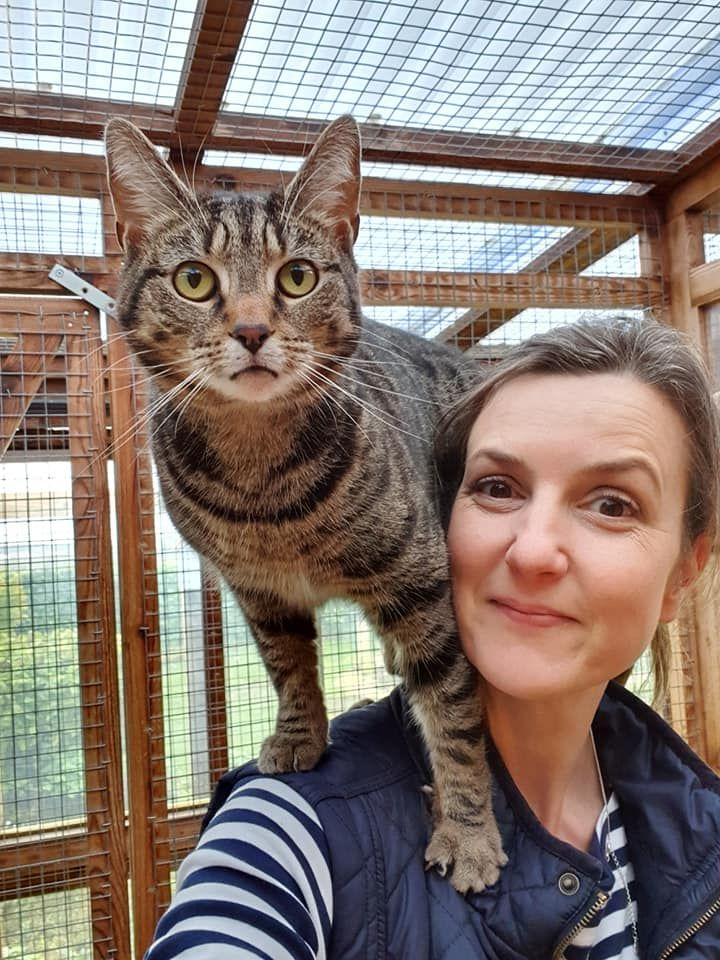 Nicola Bowers, owner of Kingstone Pet Boarding, with an inquisitive feline guest