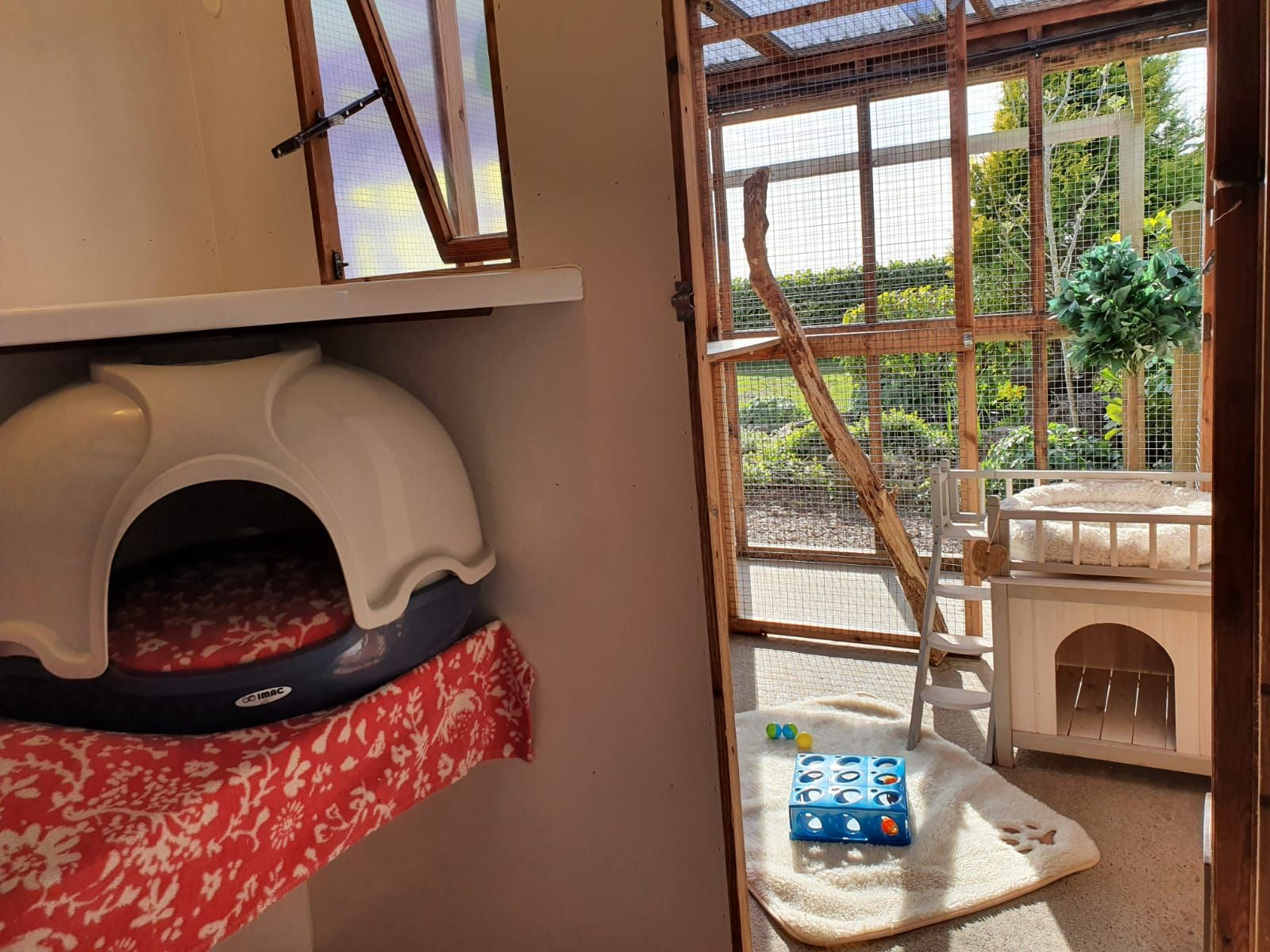 Cattery rooms all include toys, scratching posts and a lounging area with outside view
