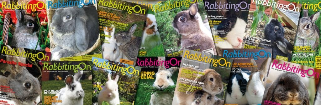 Rabbitting On Magazine is available at Reception