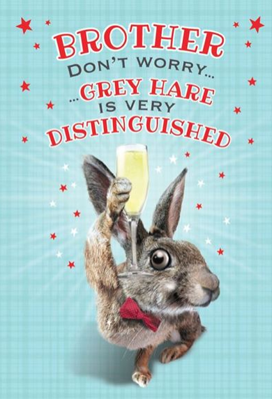 Brother Don't Worry...Grey Hare Is Very Distinguished