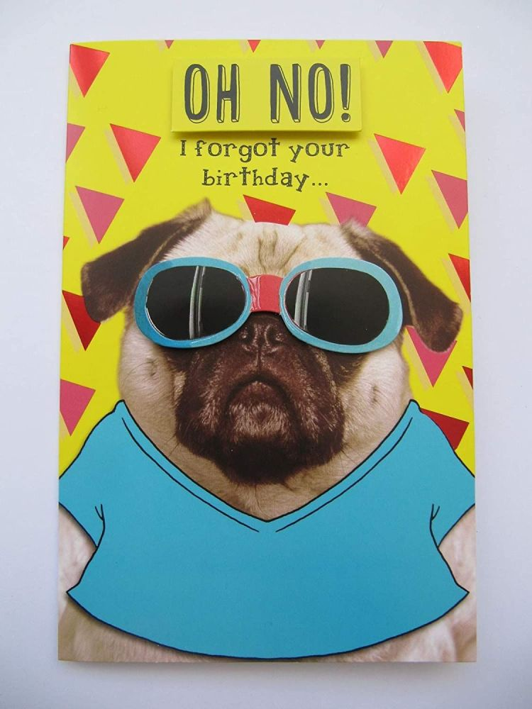 OH NO! I Forgot Your Birthday!