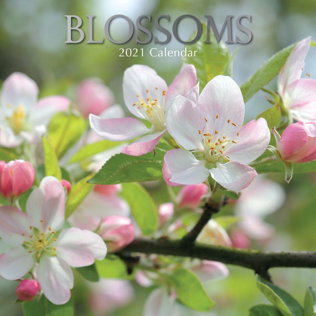 Blossoms 2021 - 16 Month Square Wall Calendar