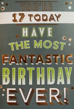 You're 17 Today Have The Most Fantastic Birthday Ever! Birthday Card