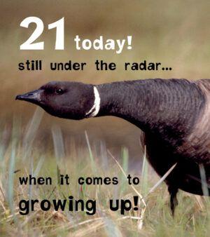 21 Today! Still Under The Radar... Funny Birthday Card