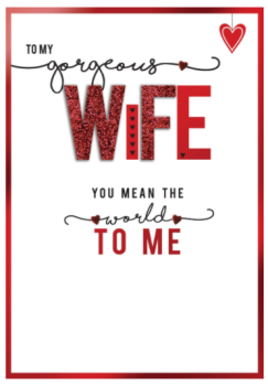 To My Gorgeous Wife You Mean The World To ME - Handmade Card