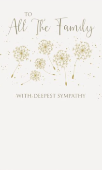 To All The Family With Deepest Sympathy - Card