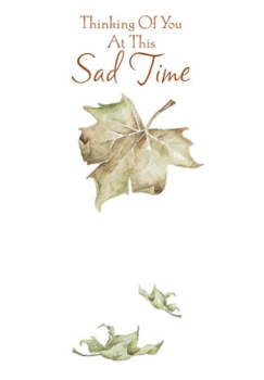 Thinking Of You At This Sad Time - Card