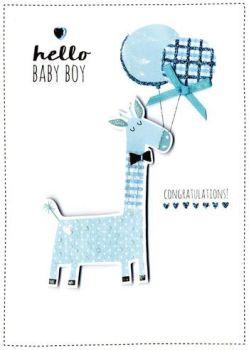 Hello Baby Boy Congratulations! - Card