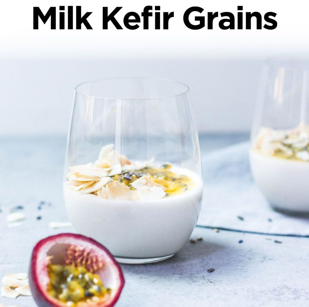 Milk Kefir Grains - Organergy