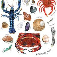 Pêche à Pied Print - Phoebe Kirk