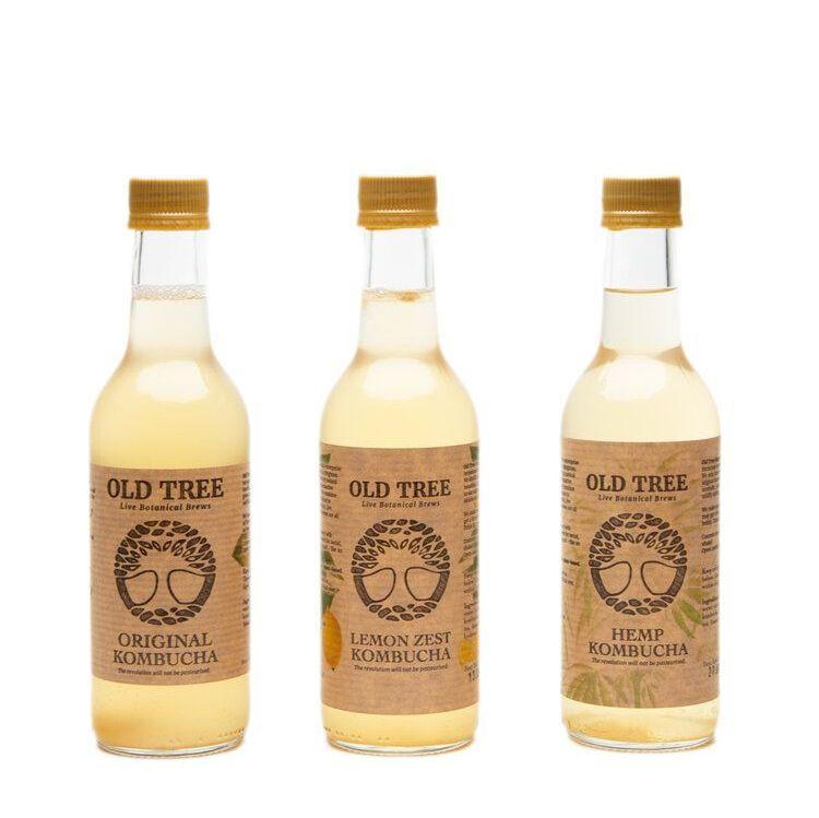Kumbucha Multipacks (Buy In Bulk & Save) - Old Tree Brewery