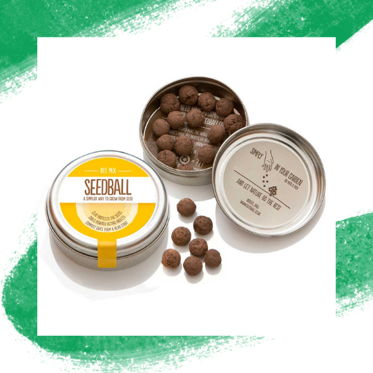 Wildflower Seedball Mixes - Bee Mix -My Green Pod