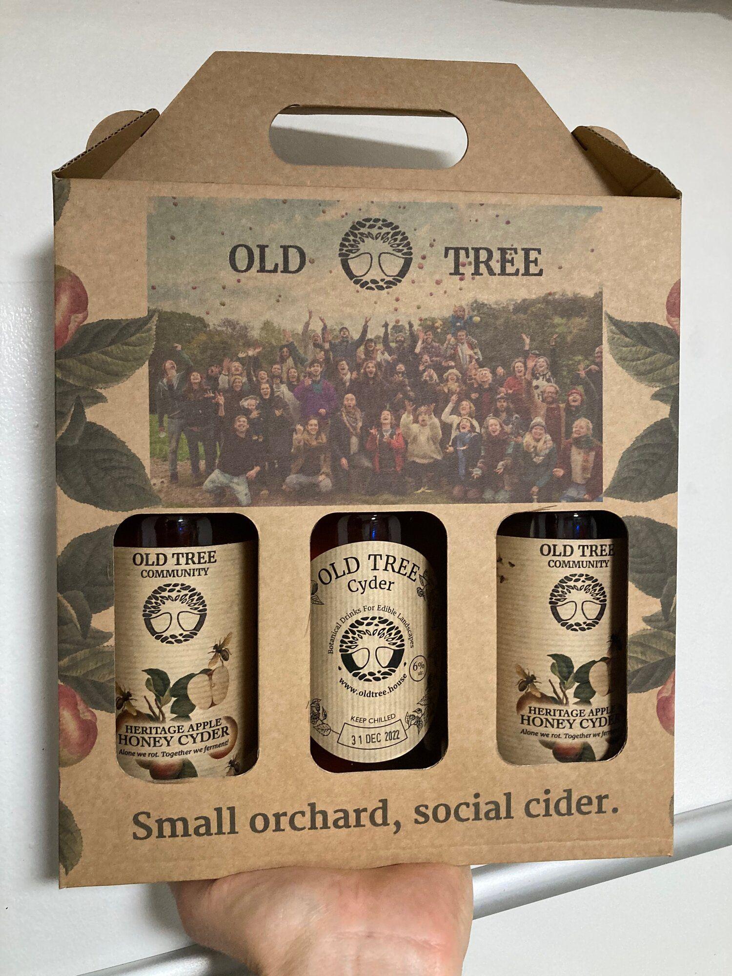 Social Cider Gift Box - Old Tree