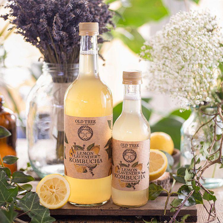 Lemon Lavender Kombucha from Old Tree Brewery