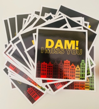 DAM I MISS YOU Vinyl Sticker Pack
