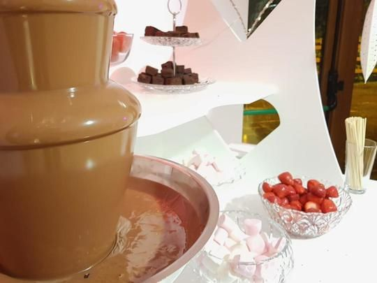 Chocolate Fountain 5