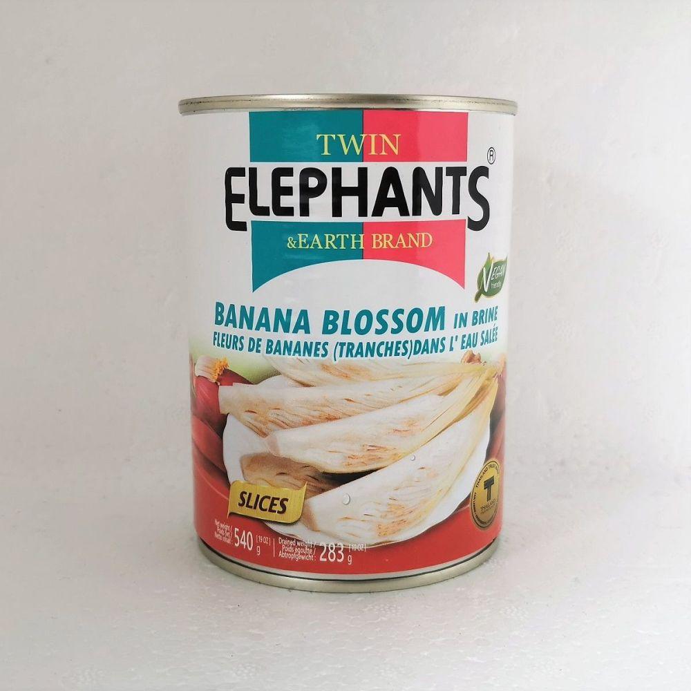 Twin Elephants Banana Blossom in Brine 540g