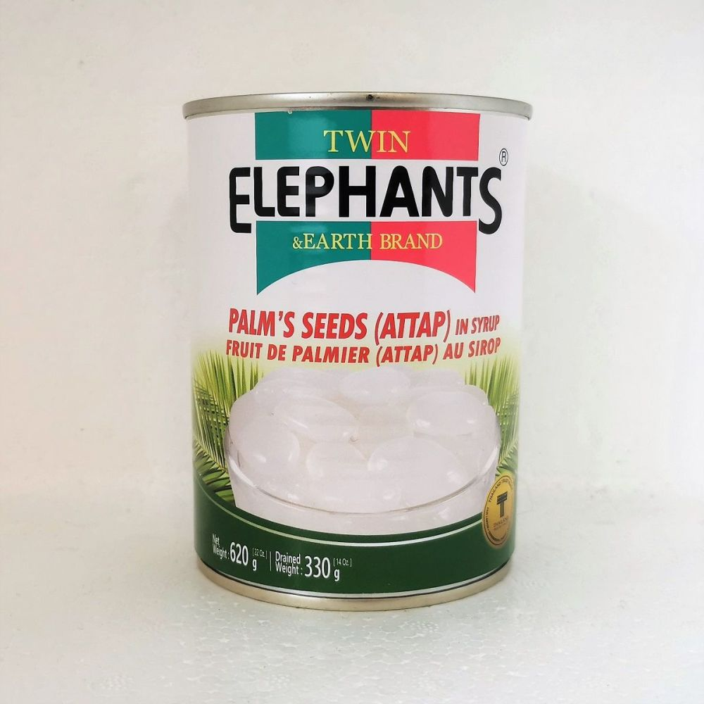 Twin Elephants Palm's Seeds (Attap) in Syrup 620g