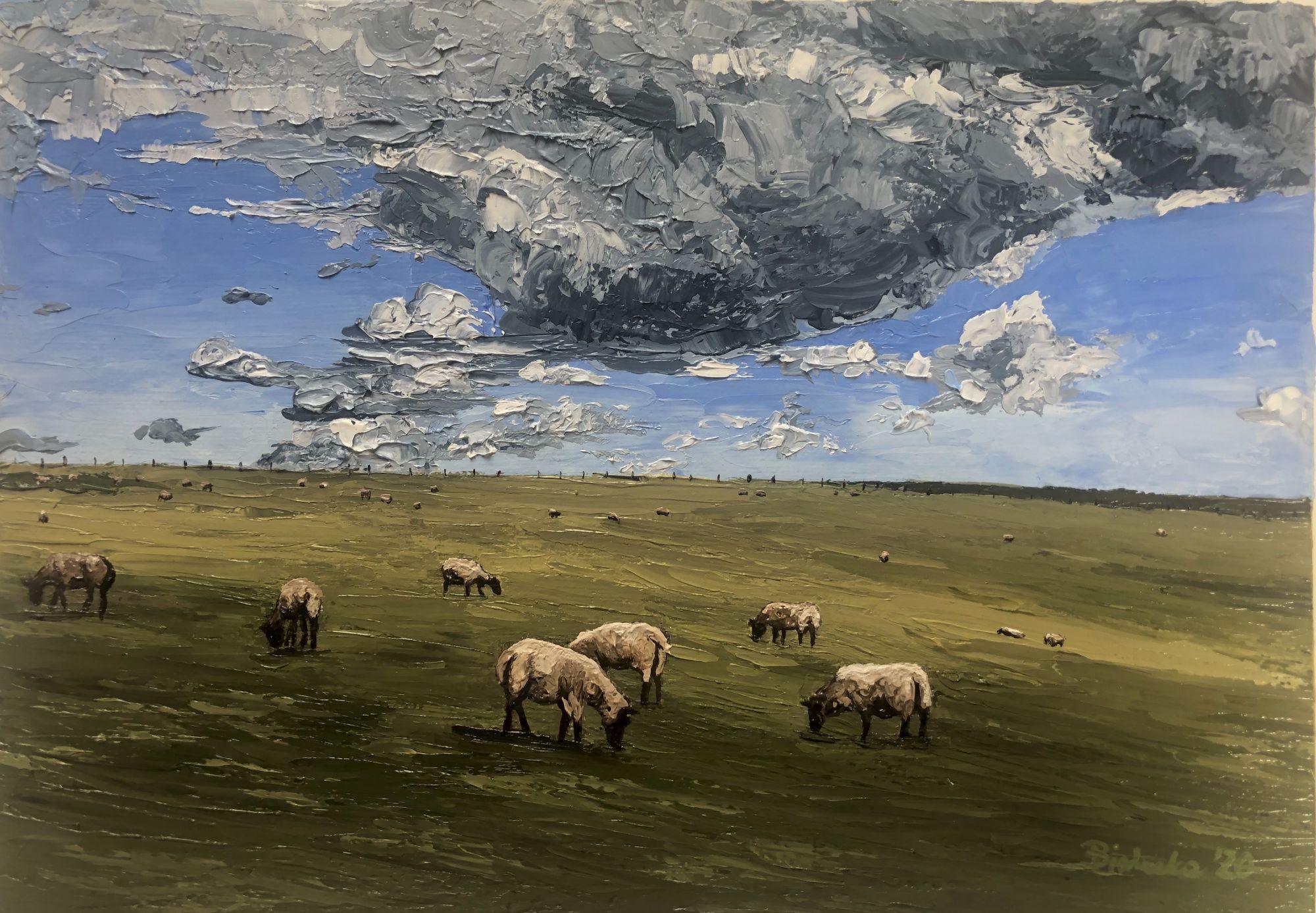 Sheep Fields near Jack and Jill Windmills