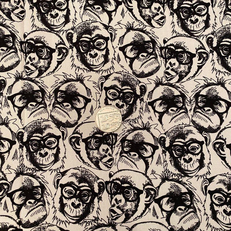 Chimps in Specs