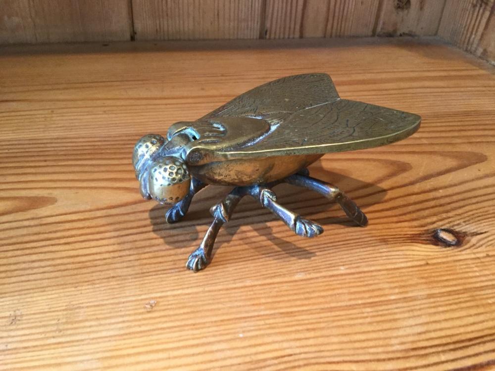 Brass fly Vesta case