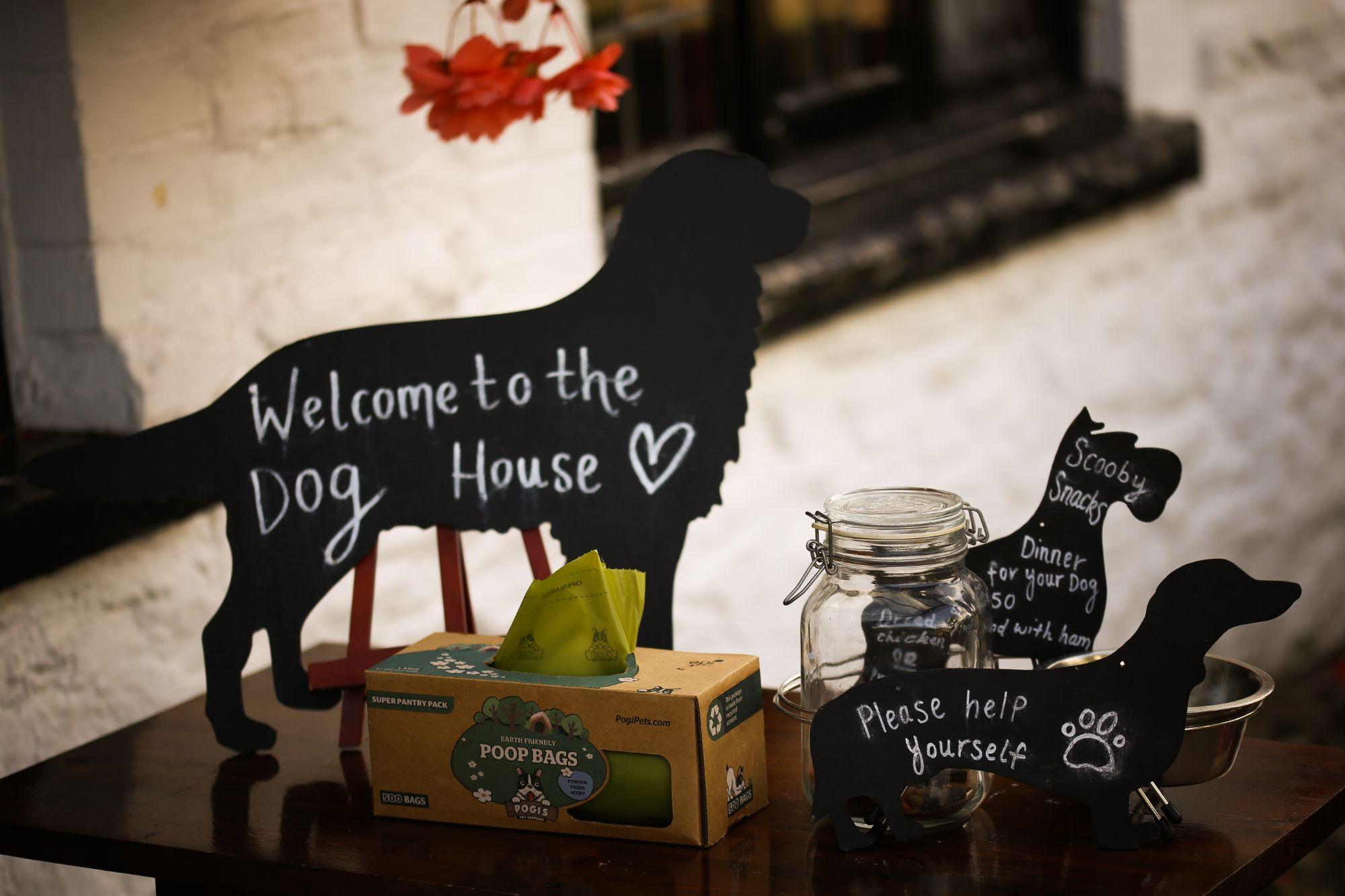 dog friendly pub and hotel free snacks