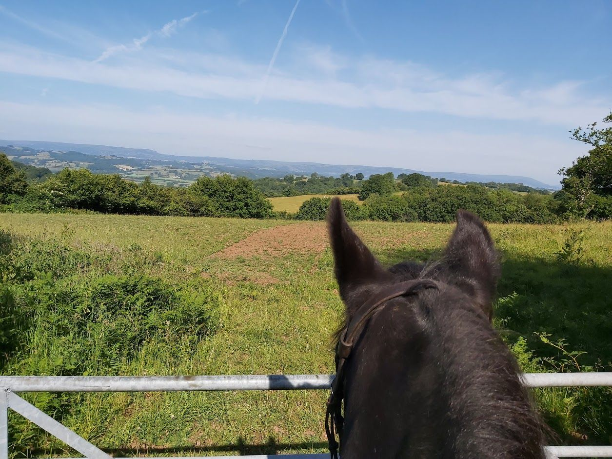 View across Usk valley on horseback