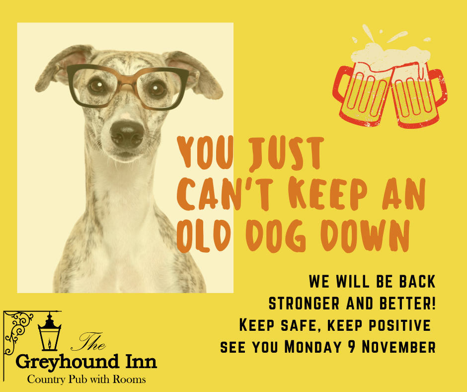 Greyhound Can keep an old dog down social media post (2)