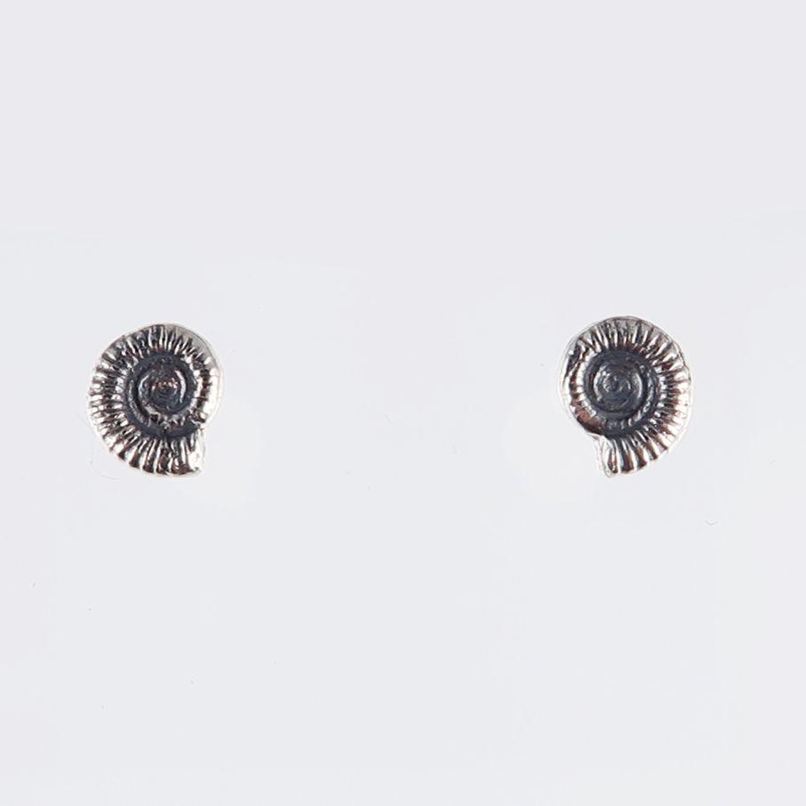 Ammonite studs