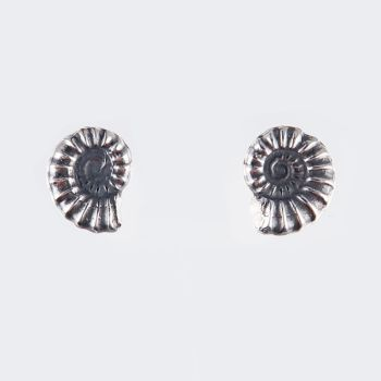Ammonite studs - medium