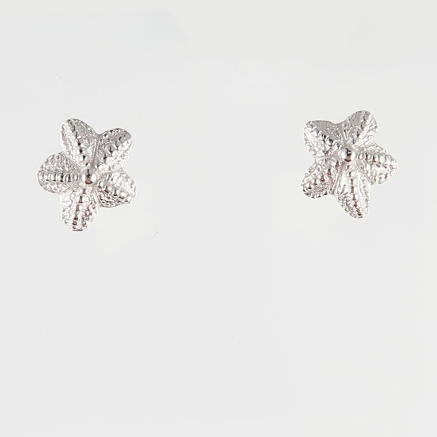 Tiny starfish studs