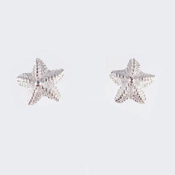 Rockpool medium starfish studs