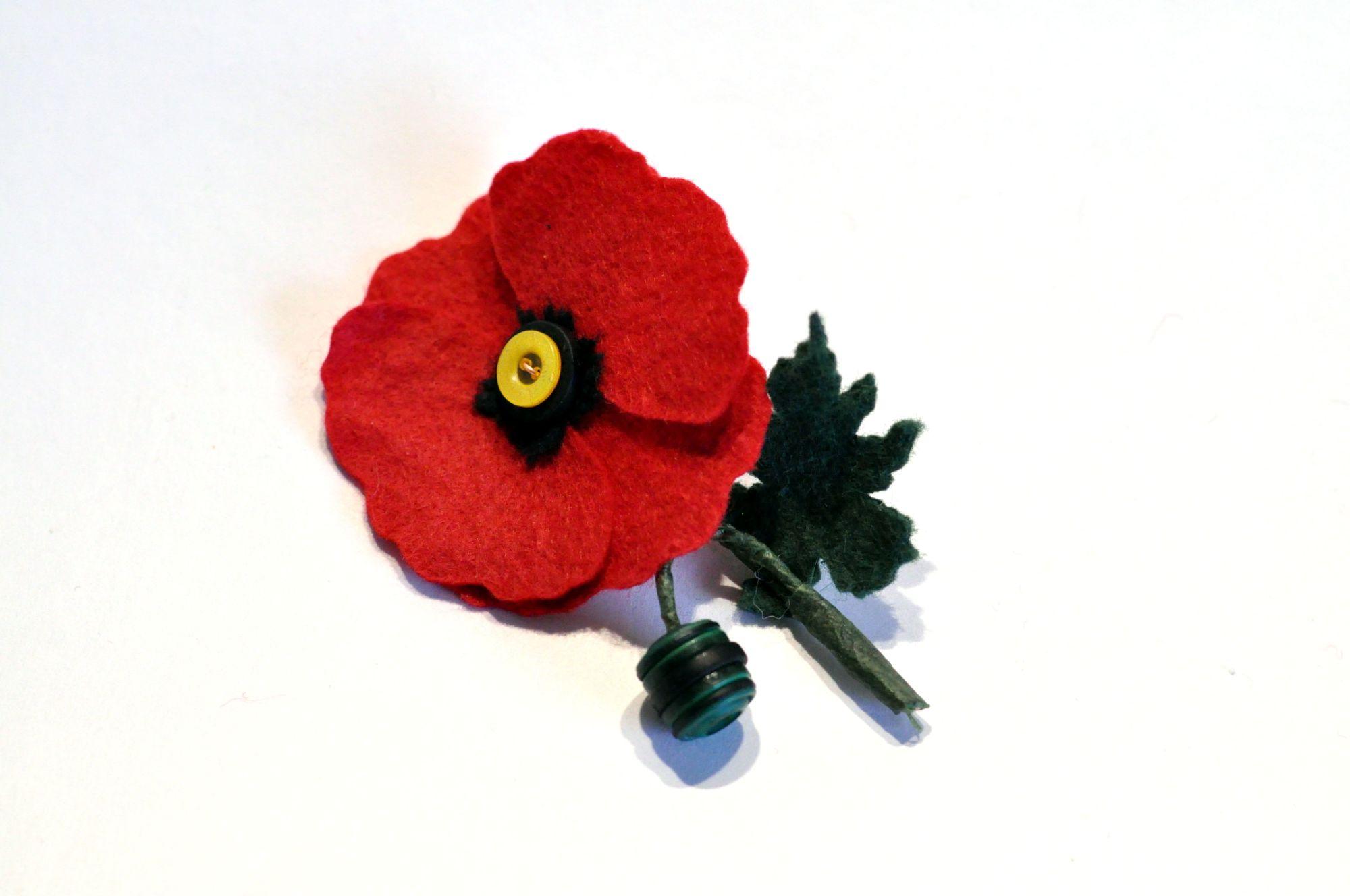 poppy buttonhole.JPG