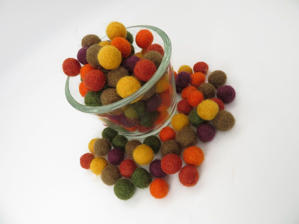 Autumn Wool Felt Balls Mix (24)