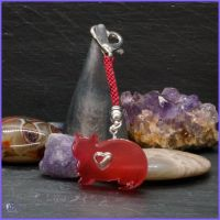 Delicate Red Cat Medallion with Heart Charm within.