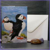 Puffins Card.