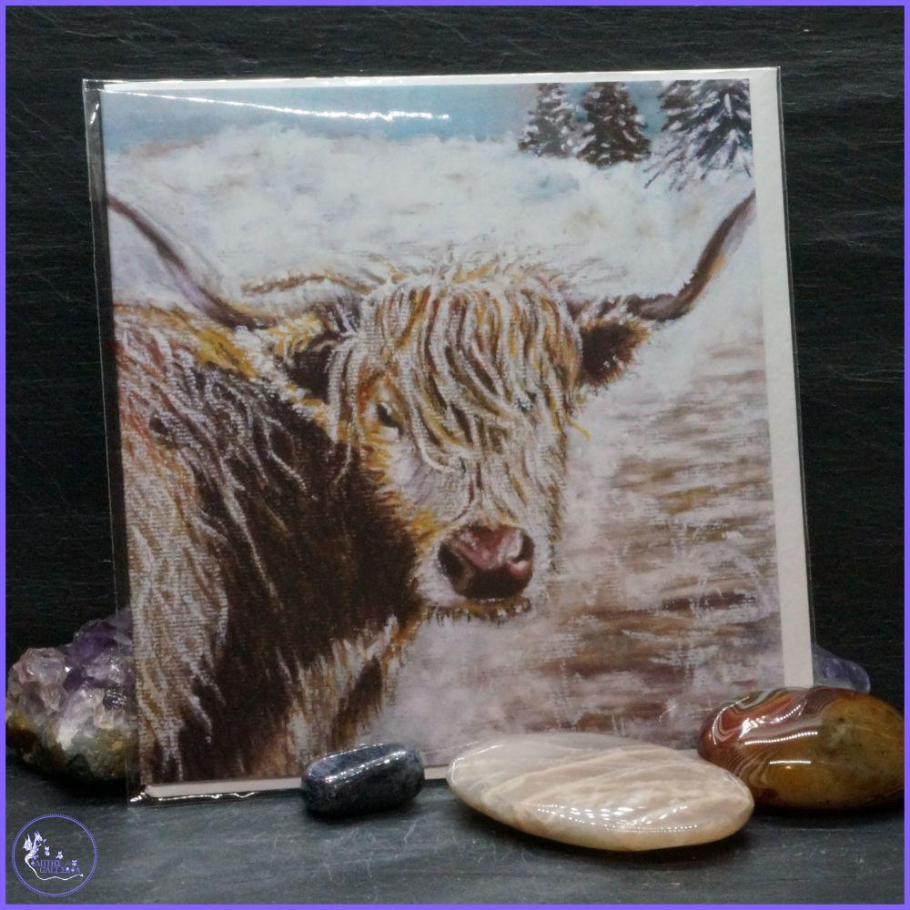 Highland Coo Christmas Card