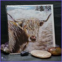 Highland Coo Christmas Card
