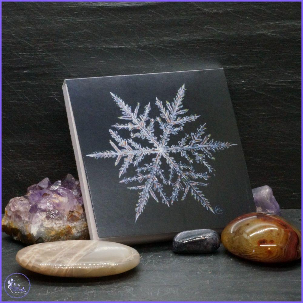 Snowflake Notepad.