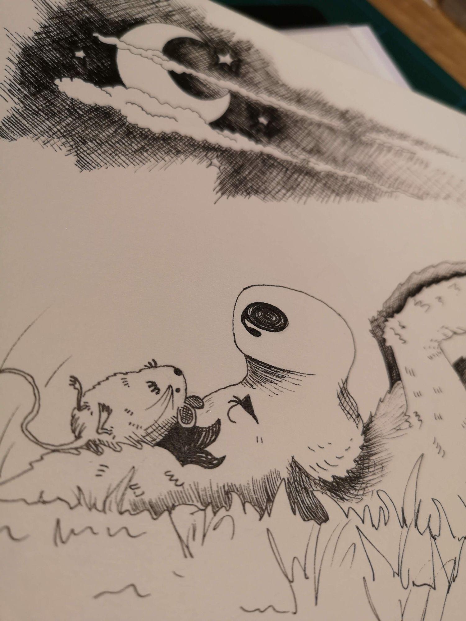 North East Book Illustrator.jpg