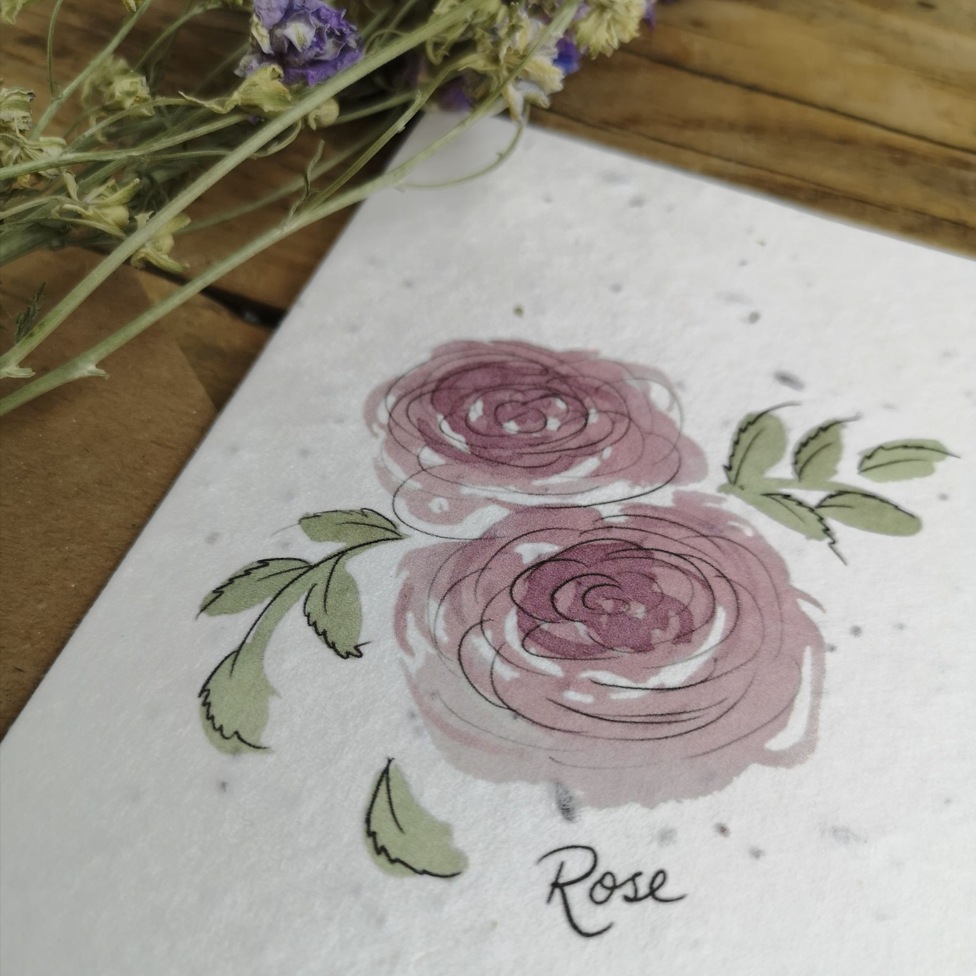 Watercolour Rose on Plantable Seed Paper
