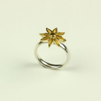 Star Anise Medium Ring