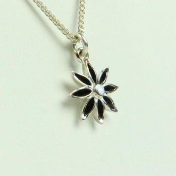 Star Anise Medium Pendant