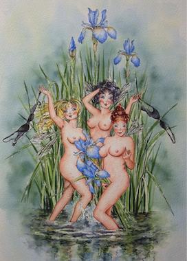 'Water Iris' Art Card