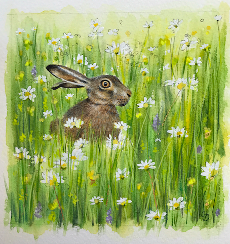 'Hare in Meadow' Original Painting (SOLD)