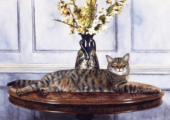 'Reclining Tabby' Hand-Signed Print