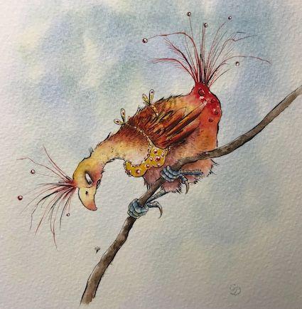 'Booby Bird 2 - Winter Plumage' Hand-Signed Print