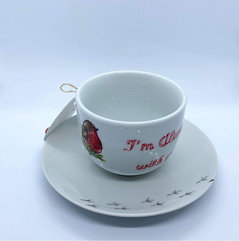 Ladybird Designs Hand Painted Robin Cup & Saucer
