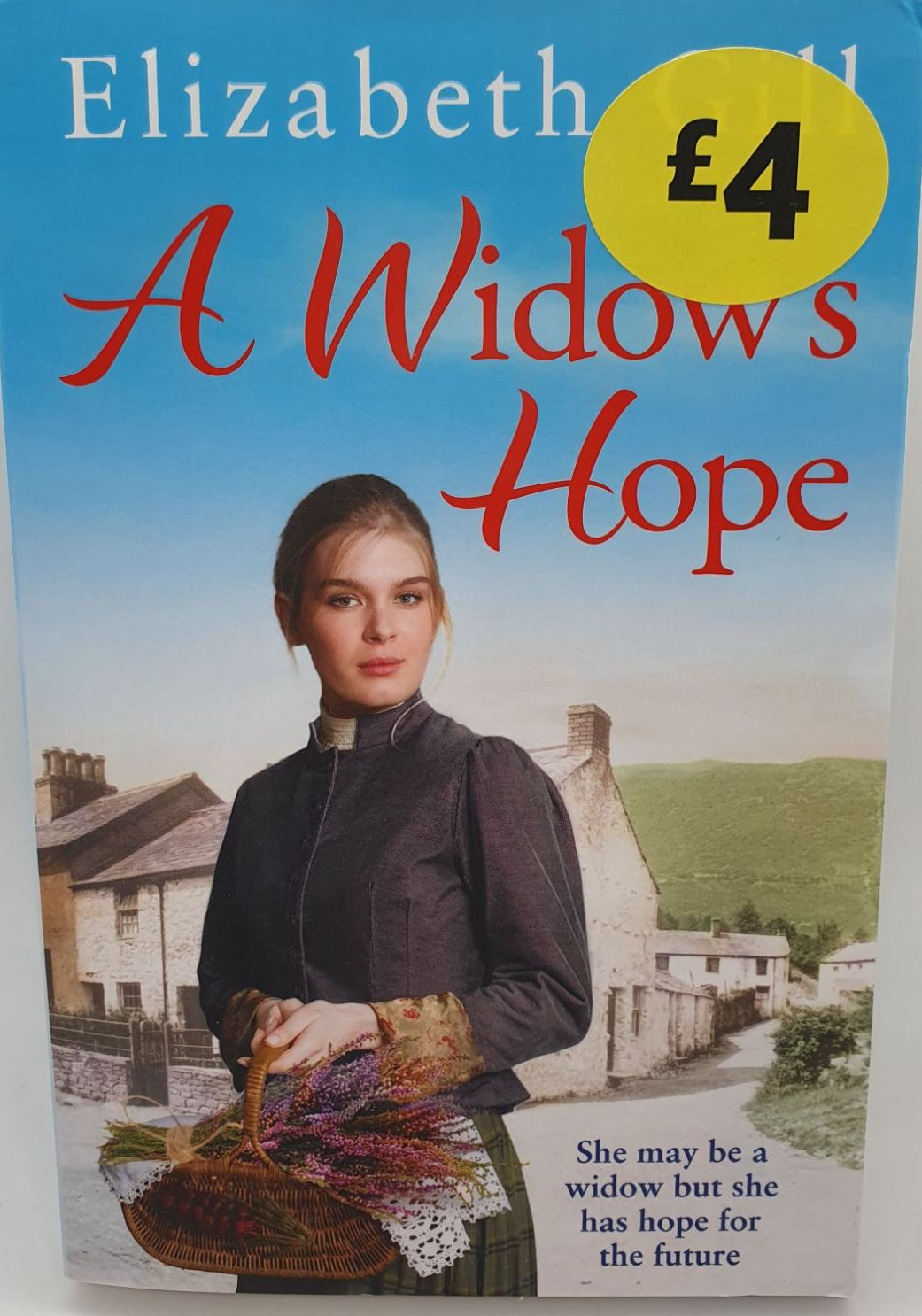 A Widow's Hope - Elizabeth Gill