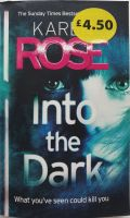 Into The Dark - Karen Rose